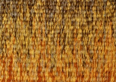 woven tapestry developing techniques