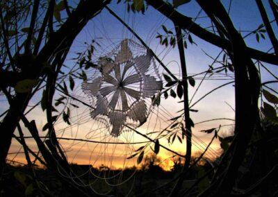 'Autumn' Outdoor Weaving