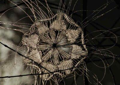'Winter' Outdoor Weaving